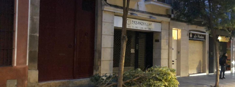 Branca caiguda per efecte del vent al Torrent. Foto: Ajuntament de Mataró