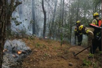 Bombers treballant en l'extinció de l'incendi a Sant Jaume de Traià. Foto: Bombers de la Generalitat